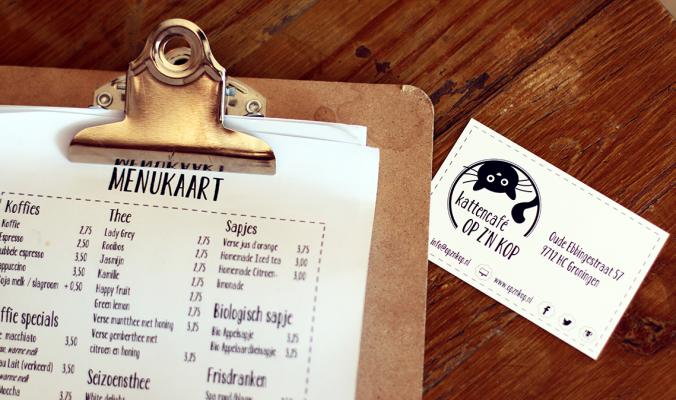 HOTSPOT | Cat Café Op Z'n Kop Groningen