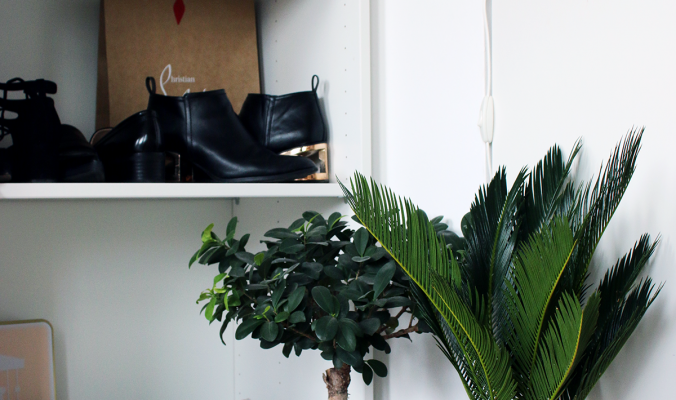 INTERIOR | How To Style Plants in Your Home