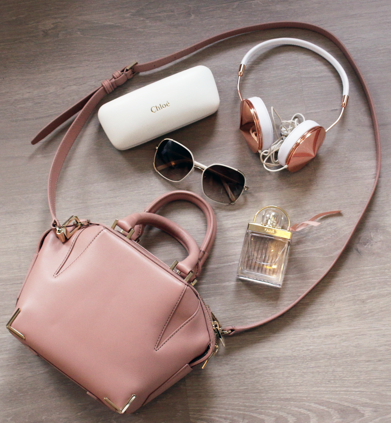NEW IN | Alexander Wang Mini Emile in Blush Designer Bag | Video